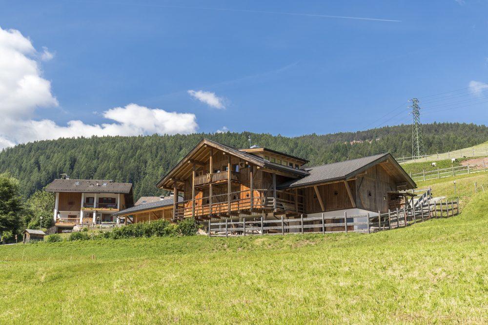 Casa Pollam e Agriturismo Ciasa do Parè, un connubio perfetto tra il legno, la natura e la buona cucina casa in legno carpenteria in legno trentino alto adige1